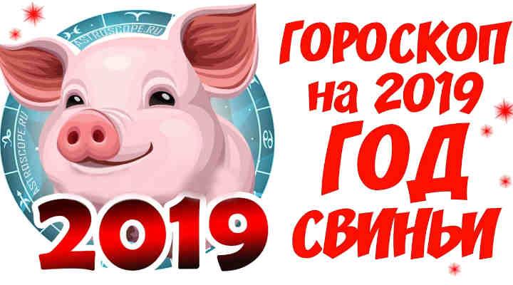 год-свиньи-2019-гороскоп